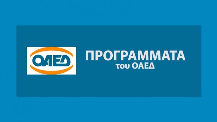 ΠΡΟΓΡΑΜΜΑΤΑ ΟΑΕΔ